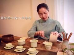 美女茶艺师表演传统工艺正山小种红茶茶道