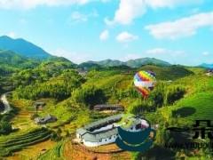 柘荣乍洋:茶旅融合 共促振兴