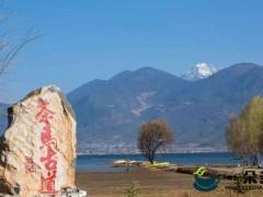 关于茶马古道的历史故事