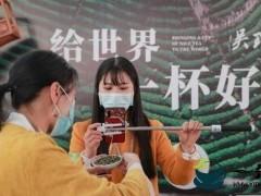 2020世界茶都茶叶交易市场鸣锣开市 雅安名山茶产业复苏