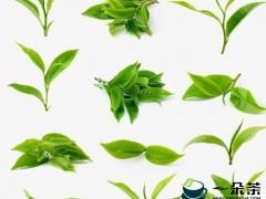 我国的茶叶分为几类-饮茶篇