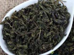 了解刺五加茶叶的功效与作用及禁忌