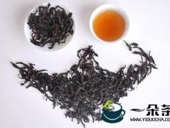 什么是老枞水仙?水仙茶属于什么茶?