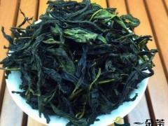 单枞茶属于什么茶,为什么叫凤凰单枞茶