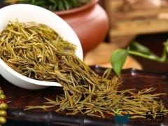 黄金芽属于什么茶?