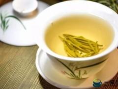 黄茶的一些基本知识
