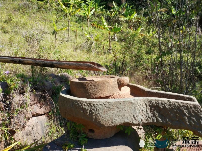 斑鸠坡迄今保存得最完整里程最长茶马古道
