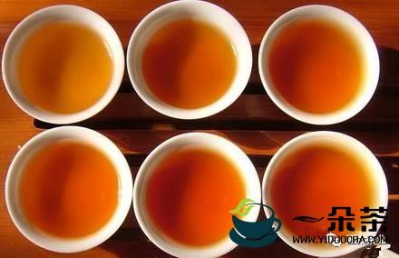 为什么泡普洱茶的时候,第一二泡都不喝?