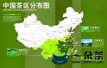 理解茶,理解中国文化