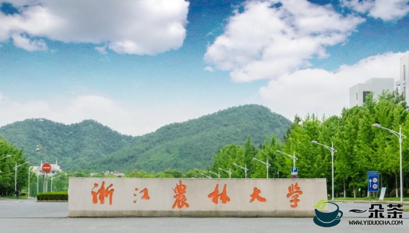 浙江农林大学创作茶文化话剧《六羡歌》