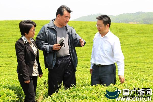 茶香溢远幸福长——走进湄潭县核桃坝村村民的小康生活