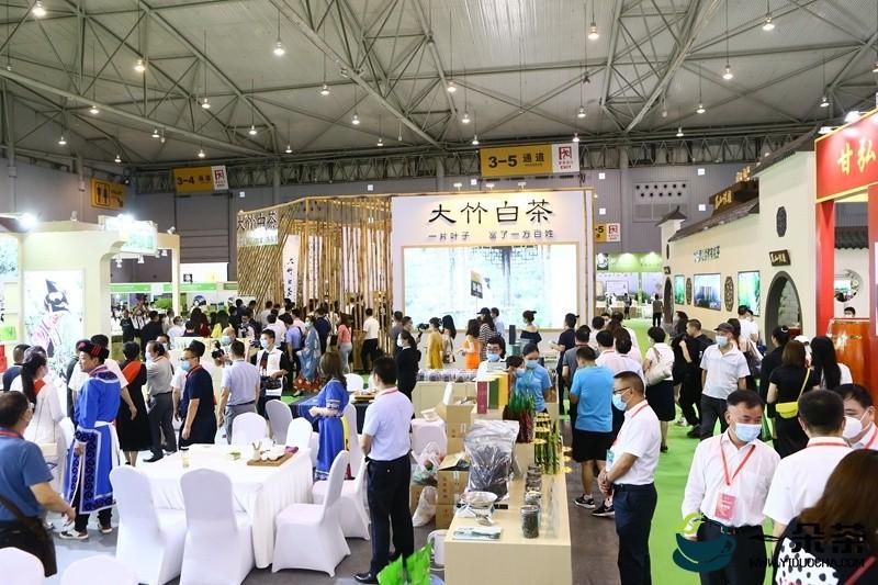 第九届四川茶博会闭幕 总成交达10.35亿元