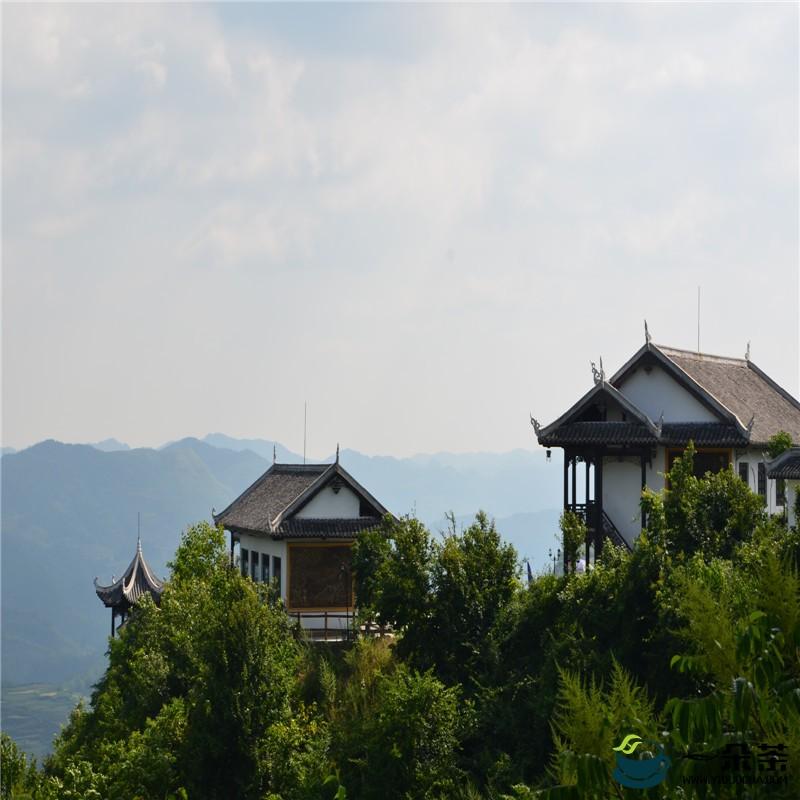 """开阳云山茶海景区的破局""""组合拳"""""""