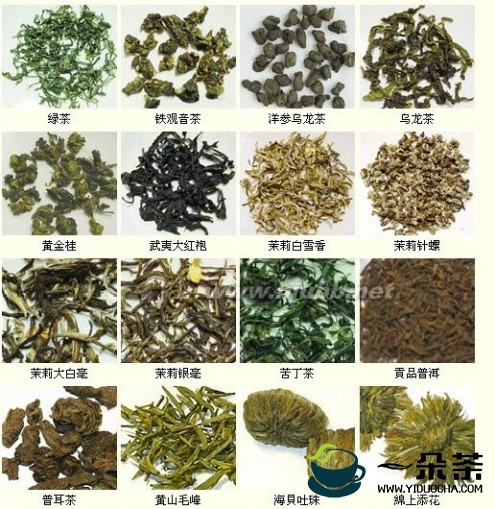 茶叶种类大全:茶叶的种类和名称有多少